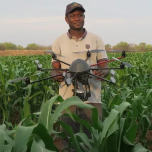 Drone agriculture 2